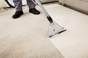 professional Carpet Cleaning cost