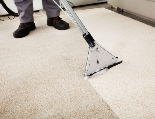 Top 5 Carpet Cleaning Tips
