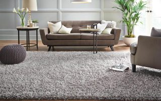 Clean area rug