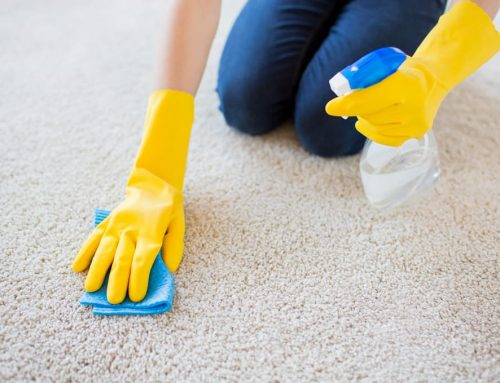 Best Way to Remove Odours from Carpet