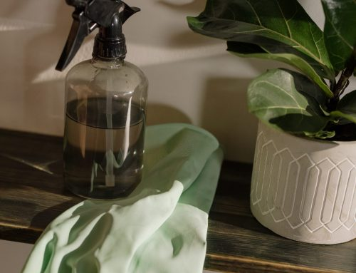 Where to Start When Cleaning a House